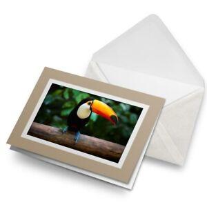 Greetings-Card-Biege-Toucan-Bird-Tropical-Jungle-15772