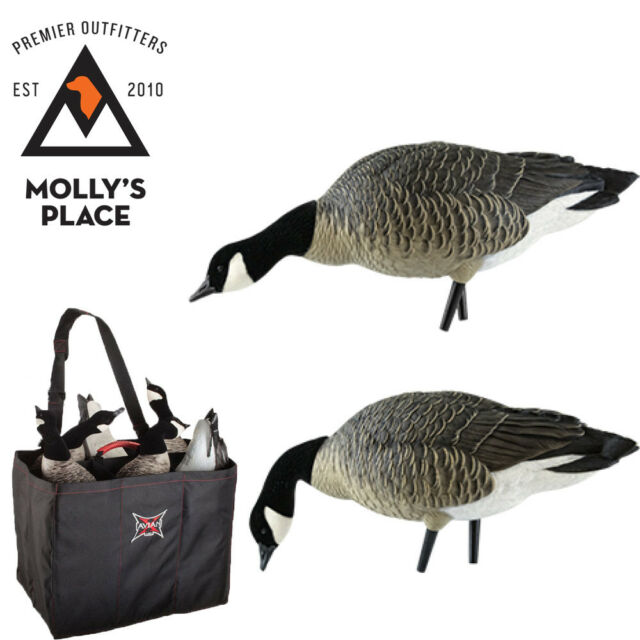 Axian-X 9007, AXP Lesser Feeder Goose Decoys 6 Pack with Decoy Bag Included