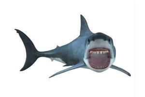 Great-White-Shark-Swimming-Full-Body-3D-Rendering-inch-Poster-24x36-inch