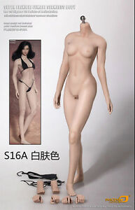 Phicen-Super-Flexible-Seamless-MID-bust-body-Pale-1-6-S16A-NO-HEAD