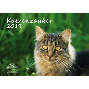 Katzenzauber-DIN-A3-Premium-Kalender-2019-Katzen-Haustier-Katzenbaby