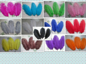 Pretty 20-100 ostrich feathers 6-8 inches 15-20 cm multicolored ornate selection
