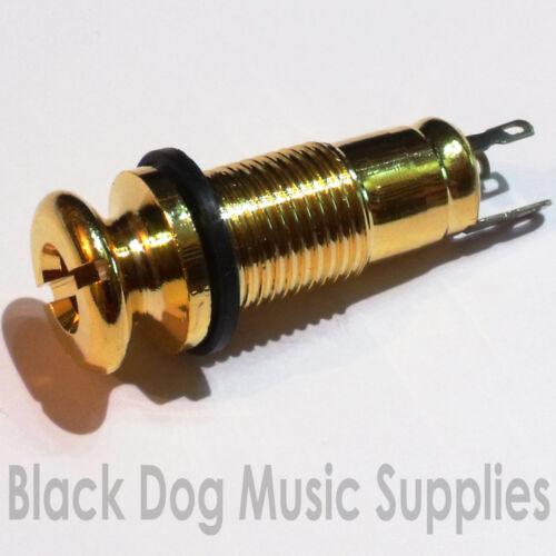 Akustische Gitarre Buchse Riemen Pin in Gold Einschraub 2-polig Selbstschneidend