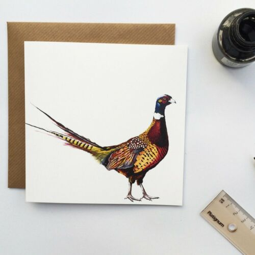 Blank inside Pack Of 6 PHEASANT CARDS