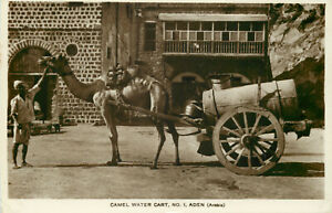 s13476-Camel-Water-Cart-No-1-Aden-Yemen-RP-postcard-COMBINED-SHIPPING