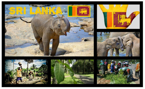 Sri Lanka Sehenswürdigkeiten//Flagge// Souvenir Neuheit Kühlschrank-magnet