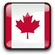 The Artwork Factory Canadian Flag Iii Framed Graphic Art Print For Sale Online Ebay