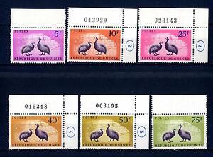 GUINEA-1961-Uccelli-Faraona
