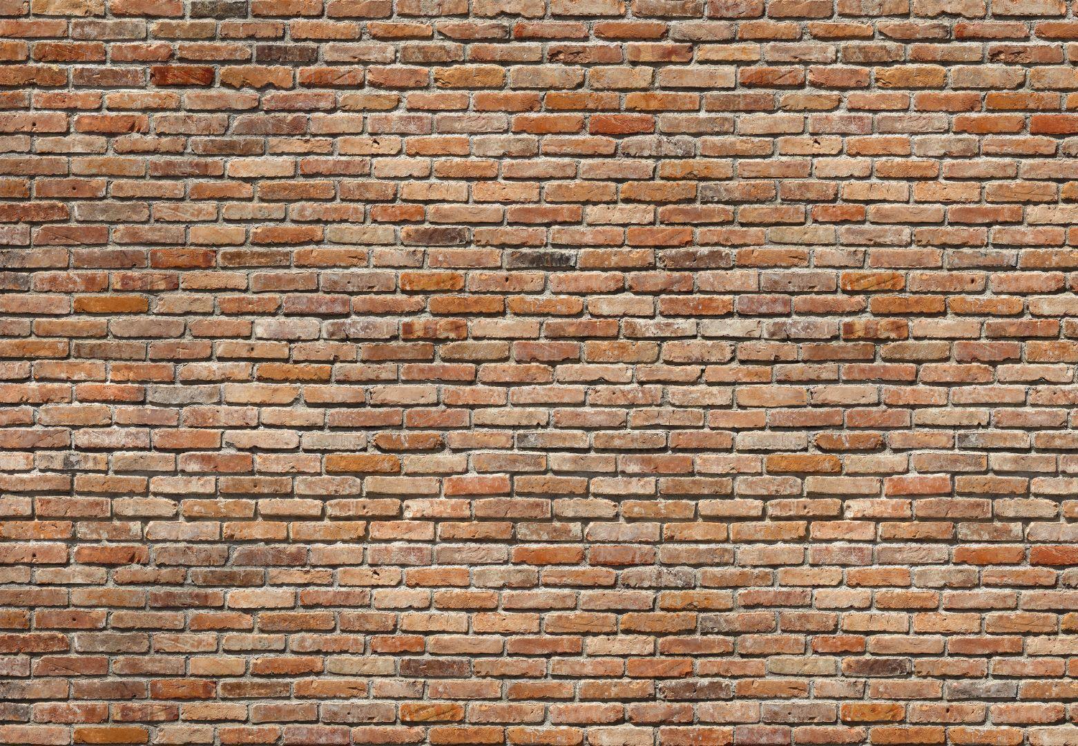 Poster fotomurale Komar - Muro Muro Muro in mattoni rossi (cod. 8-741) -  mis. 368x254 cm 901c6d