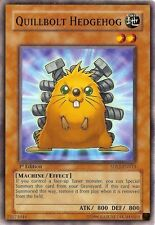 Quillbolt Hedehog (Monster Card) (5DS3-EN012)