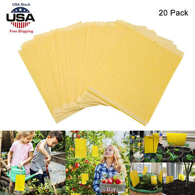 20Pcs Sticky Fly Trap Paper Yellow Traps Fruit Flies Insect Glue Catcher Stick