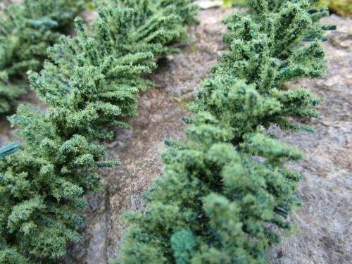 Original Jordan Hecken grün beflockt länge 10 cm 4 er Set Spur HO Top Qualität