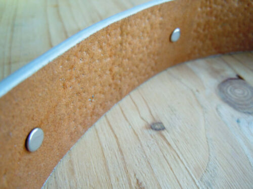 Horka Damen Ledergürtel Reitgürtel PRESENTE Nieten Pferdekopflogo hellgrau