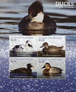 St-Vincent-amp-Grenadines-2015-MNH-Ducks-of-Caribbean-4v-M-S-I-Birds-Duck-Stamps