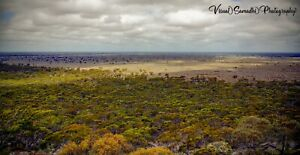 Digital-Photograph-Wallpaper-Image-Picture-Free-Delivery-Australia-2