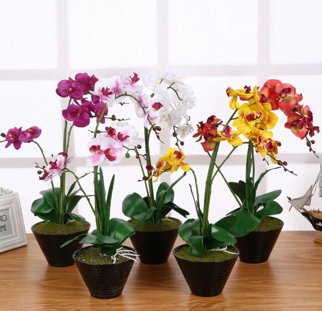 Kunstpflanze Kunstblume Orchidee weiß 65cm künstlich IKEA FEJKA Topfpflanze