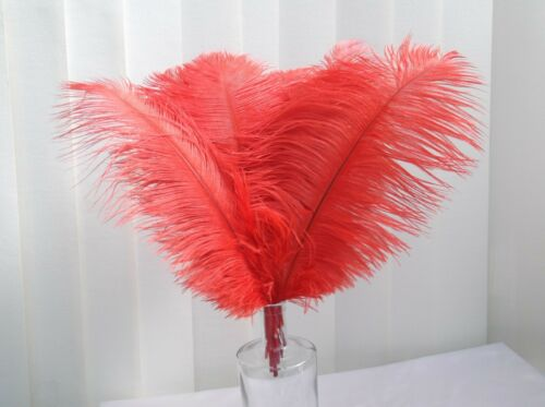 """Red Ostrich Feathers Clearance Sale 15/"""" = 38cm"""