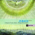 Messen BWV 233-235 von Collegium Vocale GH,Herreweghe (2010)