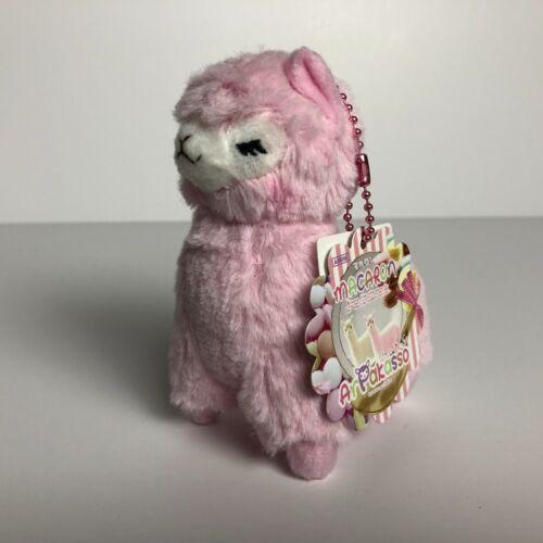 Alpacasso Alpaca Plush Japan 12cm AMUSE Macaron Arpakasso Pink Scallop Tag x1