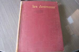 livre-ancien-de-1923-histoire-naturel-les-animaux-les-invertebres-les-vertebres