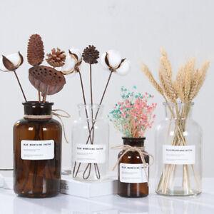 250-500ML-Nordic-Glass-Vase-Home-Flower-Vases-Plant-Hydroponic-Tabletop-Decor