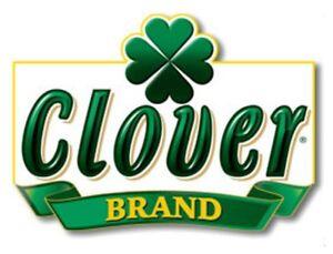 CLOVER-Brand-4-CONF-vegetale-accorciamento-16-once-100-puro-MANTECA-vegetale