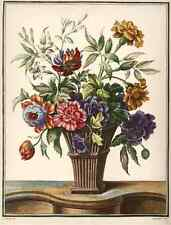 Ramo de flores silvestres-jazmín clavel Anemone-colorierte aguafuerte-Louis Tessier