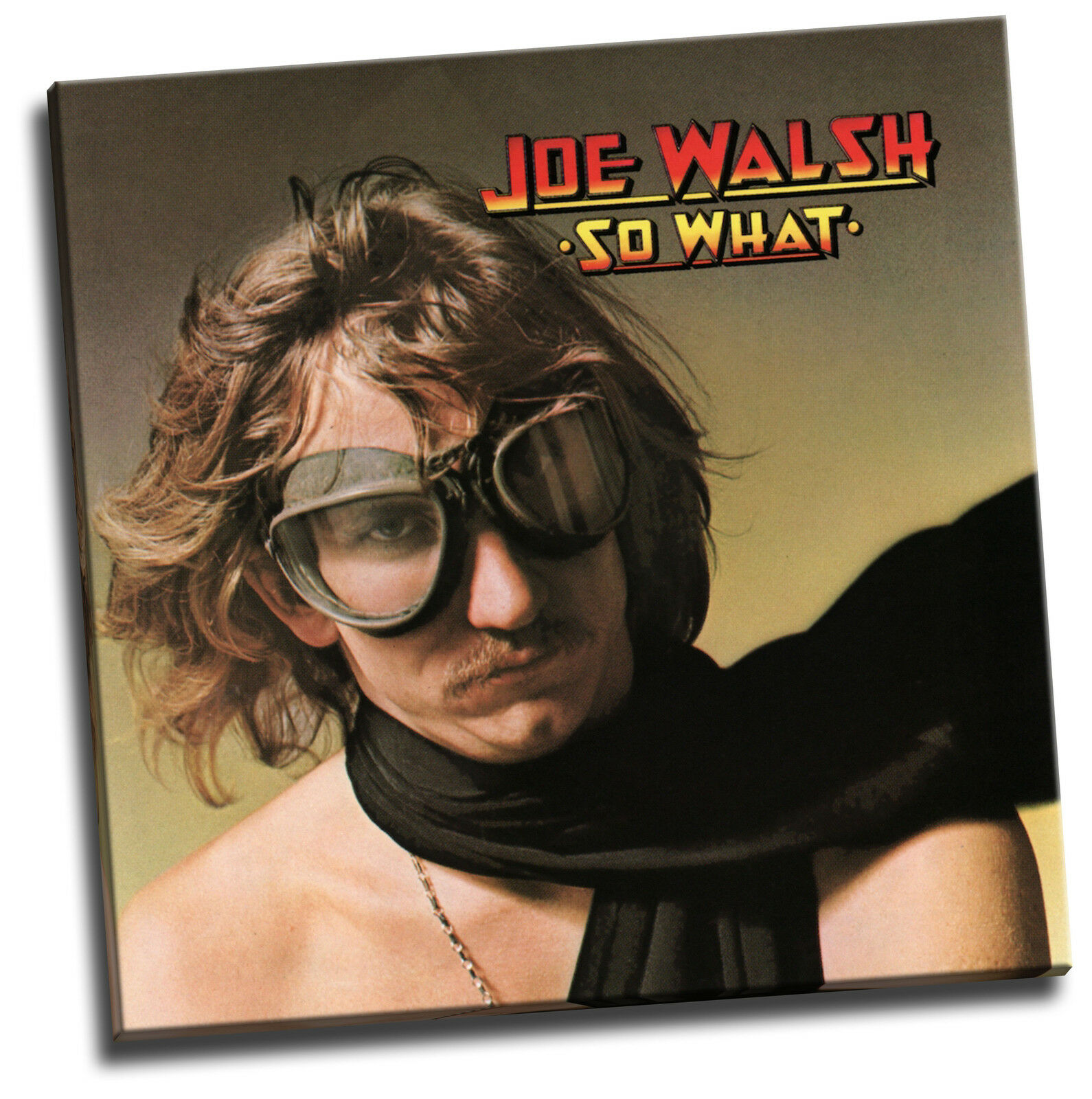 Joe Walsh - So What Giclee Canvas Album Cover Picture Art