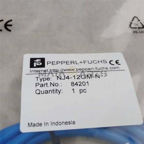 1PC Pepperl Fuchs Proximity Switch Sensor NJ4-12GM-N New