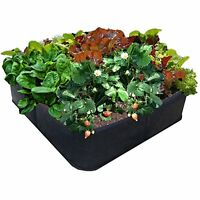 Victory 8 Fabric Raised Garden Bed, 2x2 Feet, New, Free Shipping on Sale