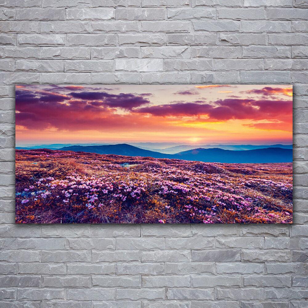 Verre Imprimer Wall Art Image 120x60 Photo Meadow Montagne Fleurs Nature