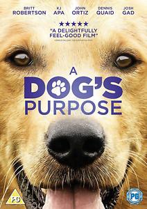 A-Dog-039-s-Purpose-DVD-2017