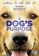 A-Dog-039-s-Purpose-DVD-2017 thumbnail 1