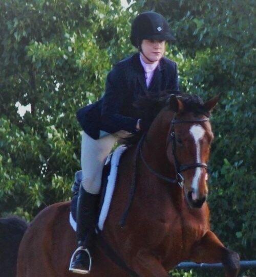 Navy Pinstripe Equestrian Hunt Coat Womens Size 10
