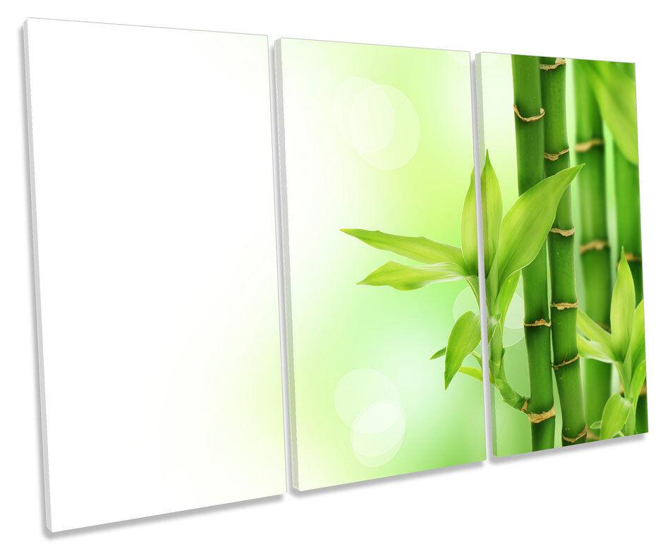 Bamboo Floral Grün TREBLE CANVAS WALL ART Box Framed Print