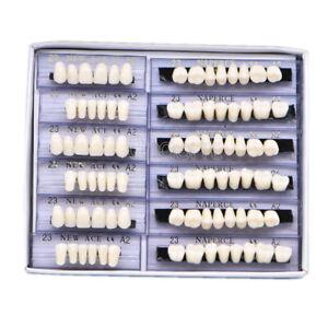 168pc-Denture-Acrylic-Resin-24-Plate-Teeth-Upper-Lower-Shade-Size-23F-A2-Dental