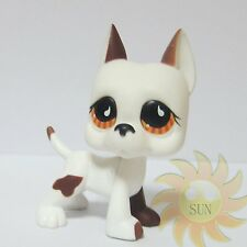 Littlest Pet Shop LPS Animal Toys #750 Great Dane Puppy Dog Teardrop Orange Eyes