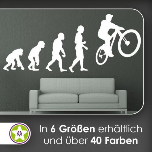 Waf1583-Kiwistar Evolution BMX-chauffeur Charles Darwin mural en 6 tailles