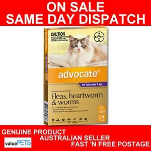 Advocate-for-Cats-Purple-Over-4kg-6-Pack-Fleas-Intestinal-Heartworm