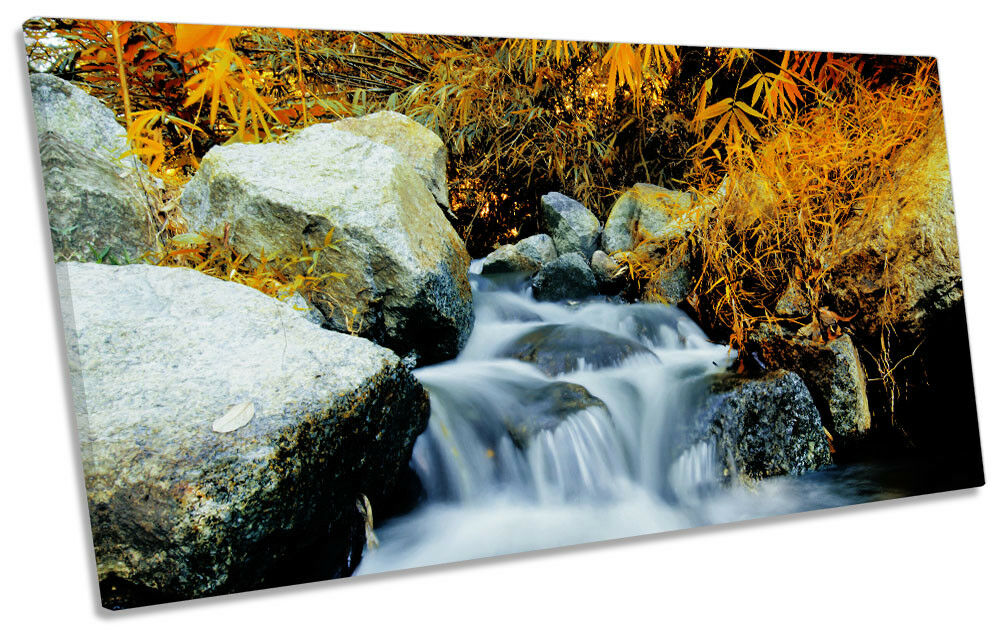 Orange Forest Stream Picture PANORAMIC CANVAS WALL ART Print
