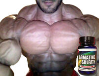 Pro Force Agmatine Sulfate Xtreme Muscle Builder Factor Bodybuilding Supplements