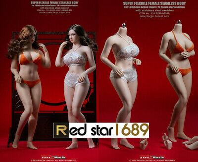 TBLeague PLLB2020-S38//S39 1//6 Seamless Pale//Suntan Large Breast Body Figure