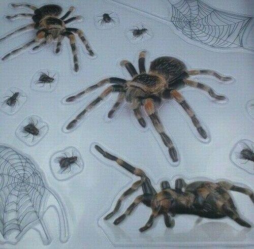 3D Life Size Realistic spiders Halloween Prop Joke Prank Window Cling Jumbo 14pc