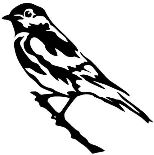 BIRD on a BRANCH Vinyl Decal Sticker Car Window Wall Bumper Raven Jay Black Dope