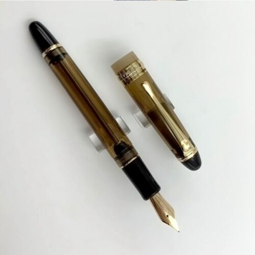 2019 Wing Sung 699 Vaccum Filling Fountain Pen 14K Gold Nib Translucent Resin