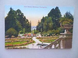 Ansichtskarte-Insel-Mainau-Bodensee-Rosengarten-um-1910
