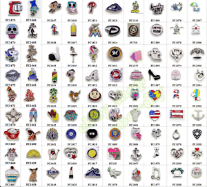 new-10pcs-Mix-Style-Floating-Charms-For-Glass-Living-Memory-Locket-Free-shipping