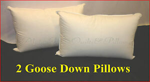 2-LUXURY-STANDARD-PILLOWS-95-GOOSE-DOWN-amp-FEATHERS-HOTEL-QUALITY-SALE-SPECIAL