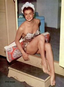 Esther-Williams-1952-Vintage-Pinup-Litho-Virgil-Apger-Photo-Publicity-Promo-COA