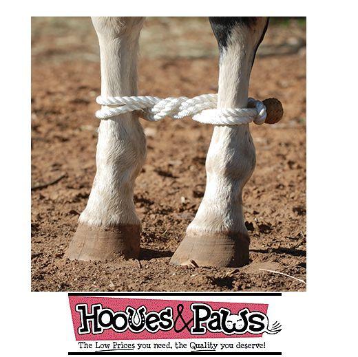 Corda Zoppicamento Cavallo Martin Saddlery Maglia Tier Qualità Resistente